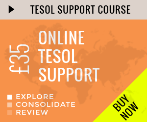 online tesol support course grey 1